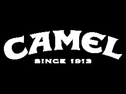 camel client